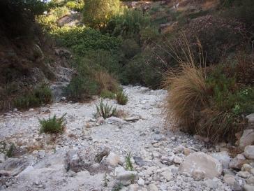 Rio Higueron basin
